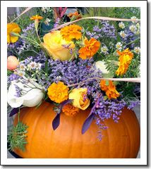 Pumpkin Bouquet - 5X7 Original Photo Print
