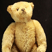 Antique Steiff Bear c1908