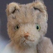 A Teddy Cat by JoPi, 1930
