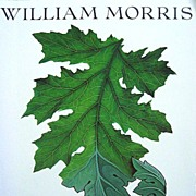 William Morris Art Furniture Design Tapestry Arts & Crafts Book Based on 1995 Exhibit