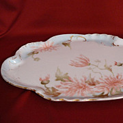 Porcelain hand painted tray Limoges (CFH/GDM)