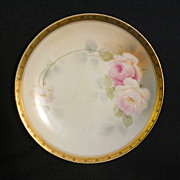 Hand painted Seltmann Bavarian porcelain plate with roses