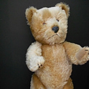 Vintage English Teddy Bear