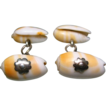 Antique Georgian Victorian Shell Cufflinks