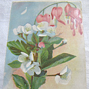 1909, Beautiful German Postcard of Painted Flowers 1909&#8207;