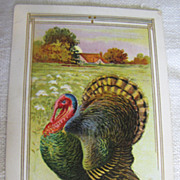 "SALE 1911‏, ""Thanksgiving Greetings"" Stunning Turkey Embossed Postcard"