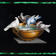 Picture in micromosaic of Pliny's Doves