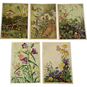 4 Marianne Schneegans Postcards Plus 1