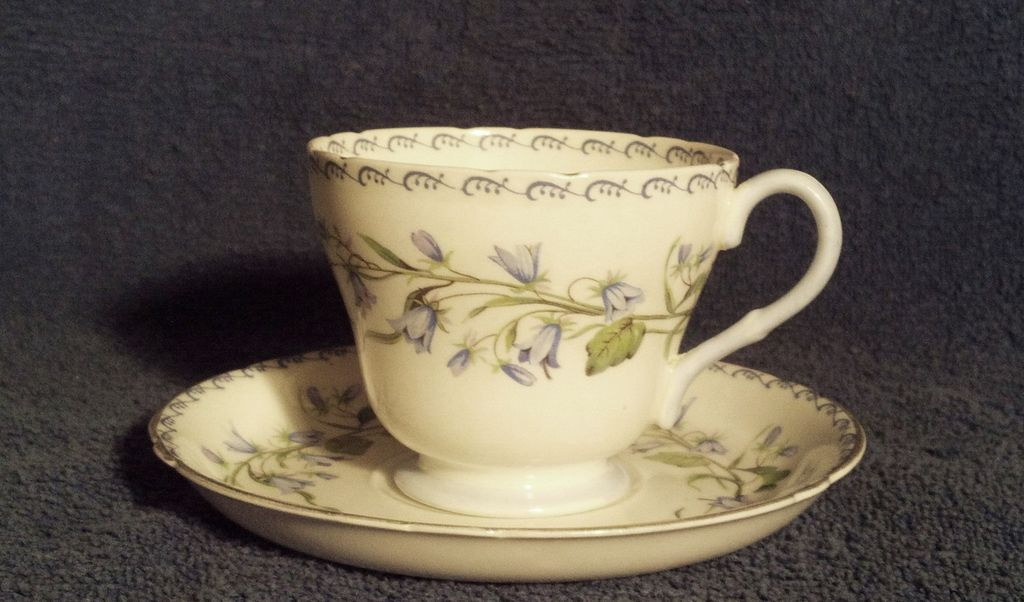 Shelley Fine Bone China Harebell 13544 Cup & Saucer