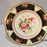 English Porcelain Cabinet Plate Hand Painted Floral Designs