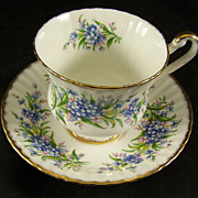 Paragon Fine Bone China Cup & Saucer Forget Me Nots