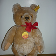 "Steiff-Teddy Bear- 0201/36 - 13"" Tall- Golden Colour -Ear Button -All tags"