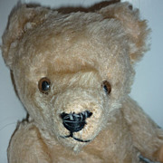 "Steiff Teddy Bear -10"" tall from the 1950's"