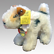 Steiff Fox Terrier - Foxy 1308.0 w/ Button & Name Tag