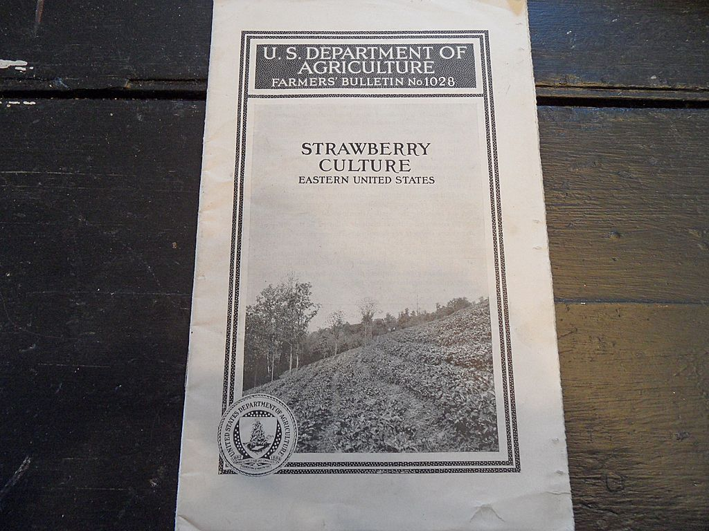 "Vintage - ""Strawberry Culture, Eastern United States"", US Dept of Agriculture, 1941"