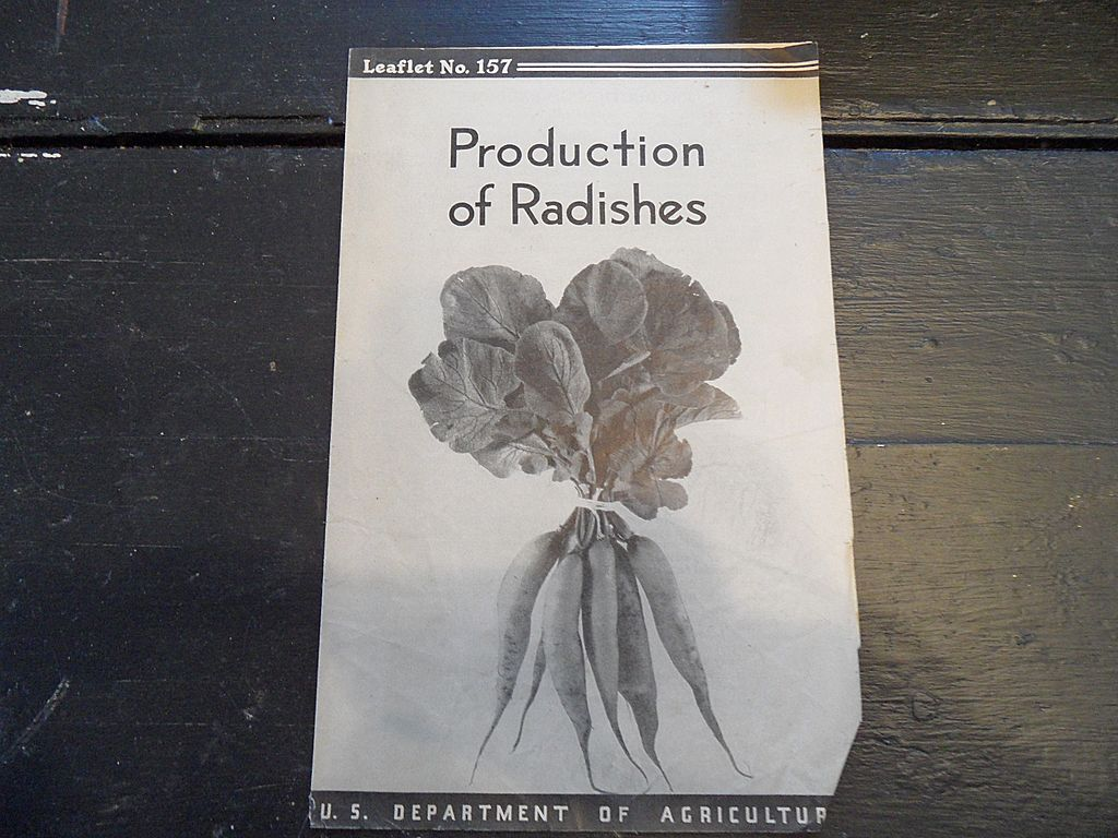"Vintage - ""Production of Radishes"", US Dept of Agriculture, 1938"