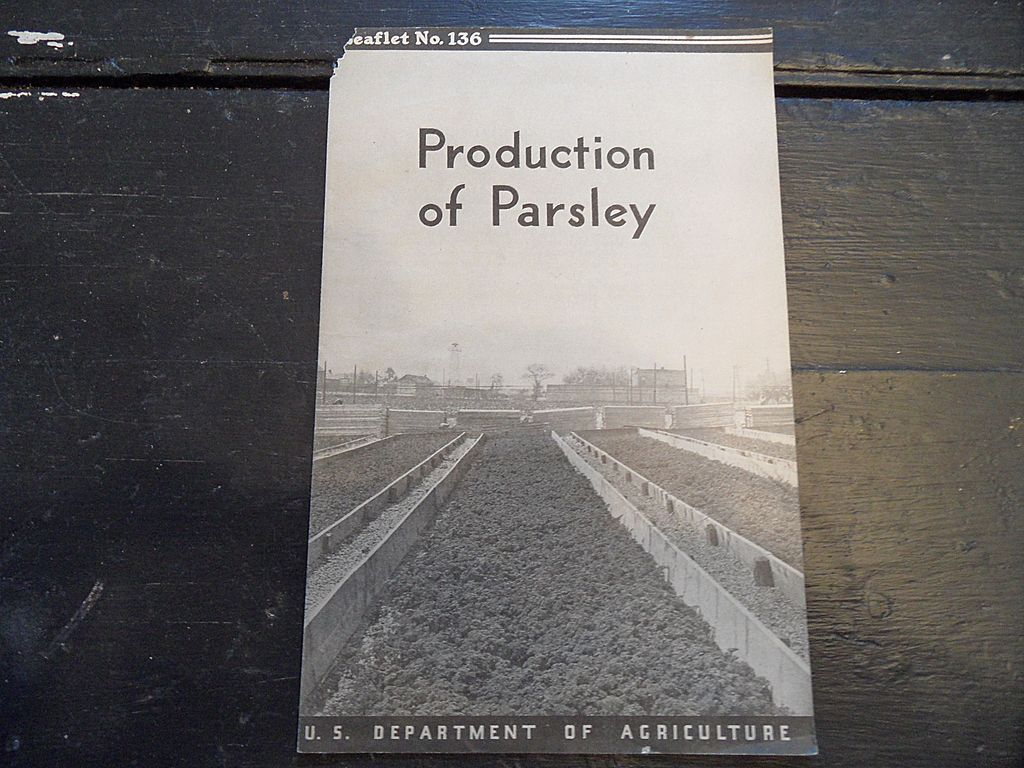 Vintage - &quot;Production of Parsley&quot;, US Dept of Agriculture, 1938