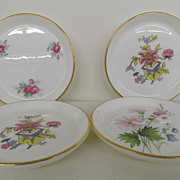 Vintage - Bone China - Set of Four Display Plates
