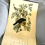 Original Vintage 1955 Audubon Calendar