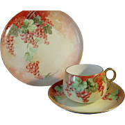 Limoges France GDA artist M.W. Poole Handpainted China Set