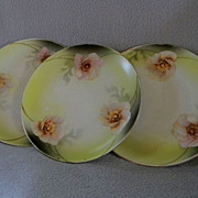 German Porcelain Desert Plate with Cherry Blossoms