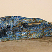 Chinese Lapis Lazuli FrilledNeck Lizard