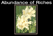 Abundance of Riches