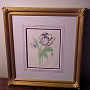 19 C. Framed Original Antique Watercolor Botanical Painting Parrot Tulip