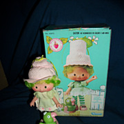 43970 Lime Chiffon w/parrot Kenner doll Strawberry Shortcake US Buyer Free P&O