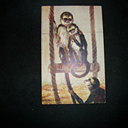 Tuck Postcard Oilette The Monkey House 9490 Free P&I