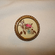 Victorian Framed Celluloid MOSS ROSE Pin Brooch