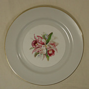 Noritake Margarita 5049 Vintage Dinner Plate 10in China Gold Rim