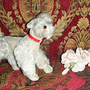 "9"" tall Snobby the poodle made by Steiff circa 1950`s"