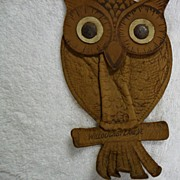 Vintage Souvenir Willoughby VT Owl Change Purse