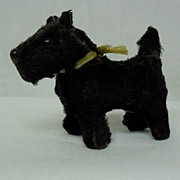 Miniature German Black Scotty Dog