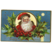 Santa Face Cameo Postcard