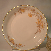 Limoges Bowl and 7 Plates by Tressemanes and Vogt 1891