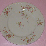 "Flower Plate and Charger ""De Haviland"" France"