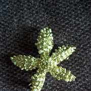 SOLD Star Fish Pin