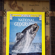 National Geographic Vol. 149, No. 3, March 1976