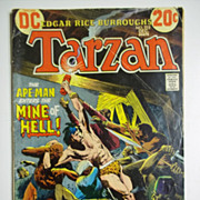 DC Comics Tarzan Vol. 25, No. 215, Dec. 1972