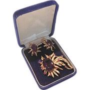 REDUCED Incredible 14kt Gold Amethyst and Ruby Brooch & Earring Set