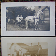 Sleigh and Buggy Horse Real Photo Postcards - Early 1900's