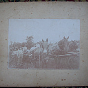 Two Mules and a Horse  Working Cabinet Card - Early 1900's