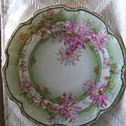 Lovely Limoge Hand Painted Plate