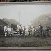 Horses in Front of a Haystack  Cabinet Card - Early 1900's