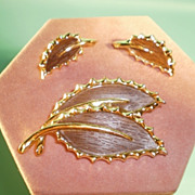 Sarah Coventry Pin & Earring Set  Wooded Beauty