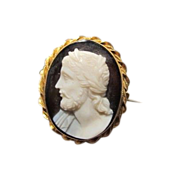 Oval Sardonyx (hardstone) Cameo brooch depicting the profile of a mythological figure, 19th ce