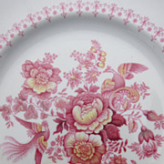 Royal Doulton dinner plate Phoenix