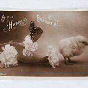 Delightful Easter Postcard - Real Photo- Chick, Butterfly, Carnation